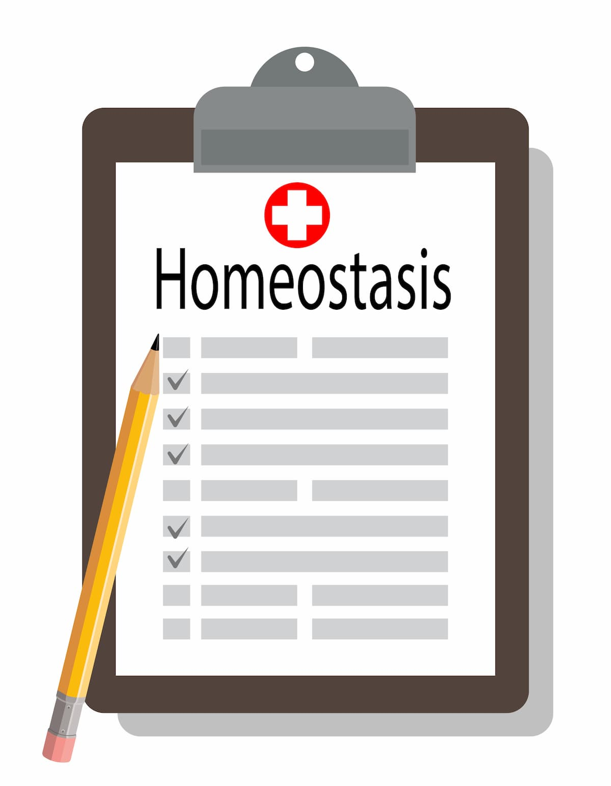 clipboard with a Homeostasis checklist