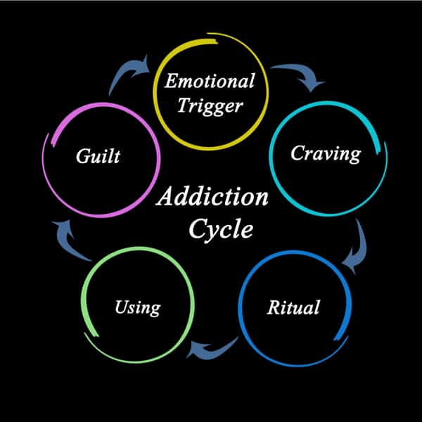 Components of Addiction Cycle