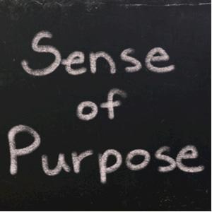 sense of purpose - white chalk handwriting on a blackboard
