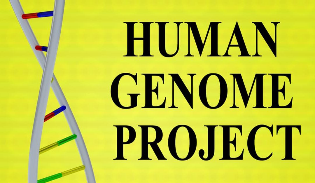 A 3D illustration of HUMAN GENOME PROJECT script with DNA double helix , isolated on a yellow background.