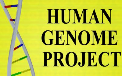 Human Genome Project: Genome Sequencing