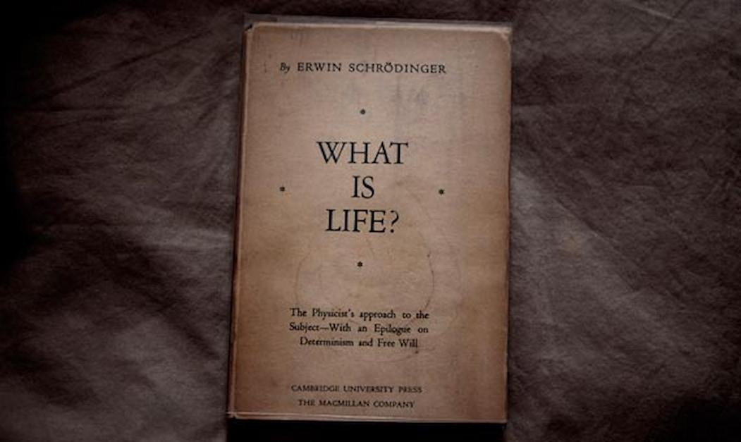 Erwin Schrödinger's book What is Life?
