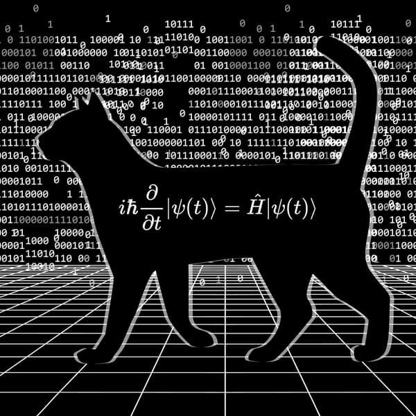Schrodingers Cat with quantum entanglement equations