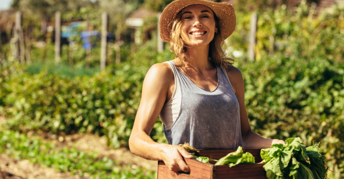 Female gardener carrying crate with freshly harvested vegetables in farm
