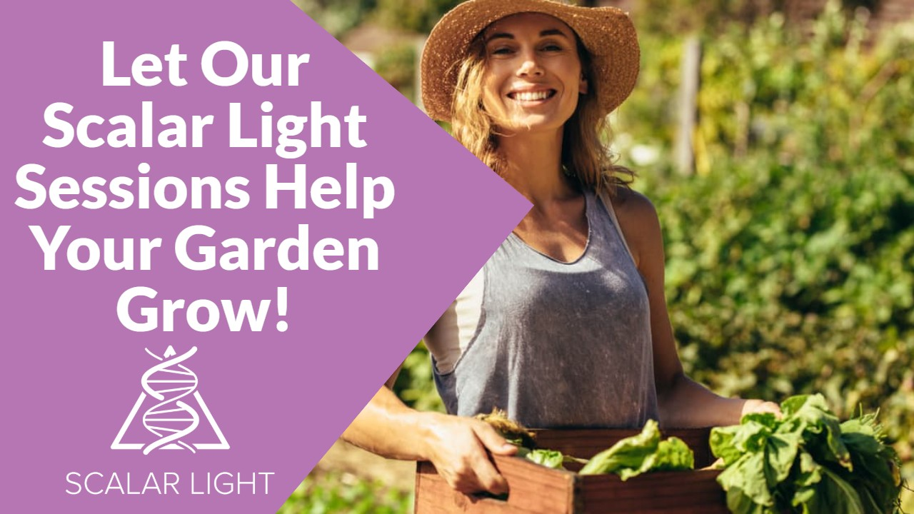 Try our Scalar Light Plant Health Program Today!