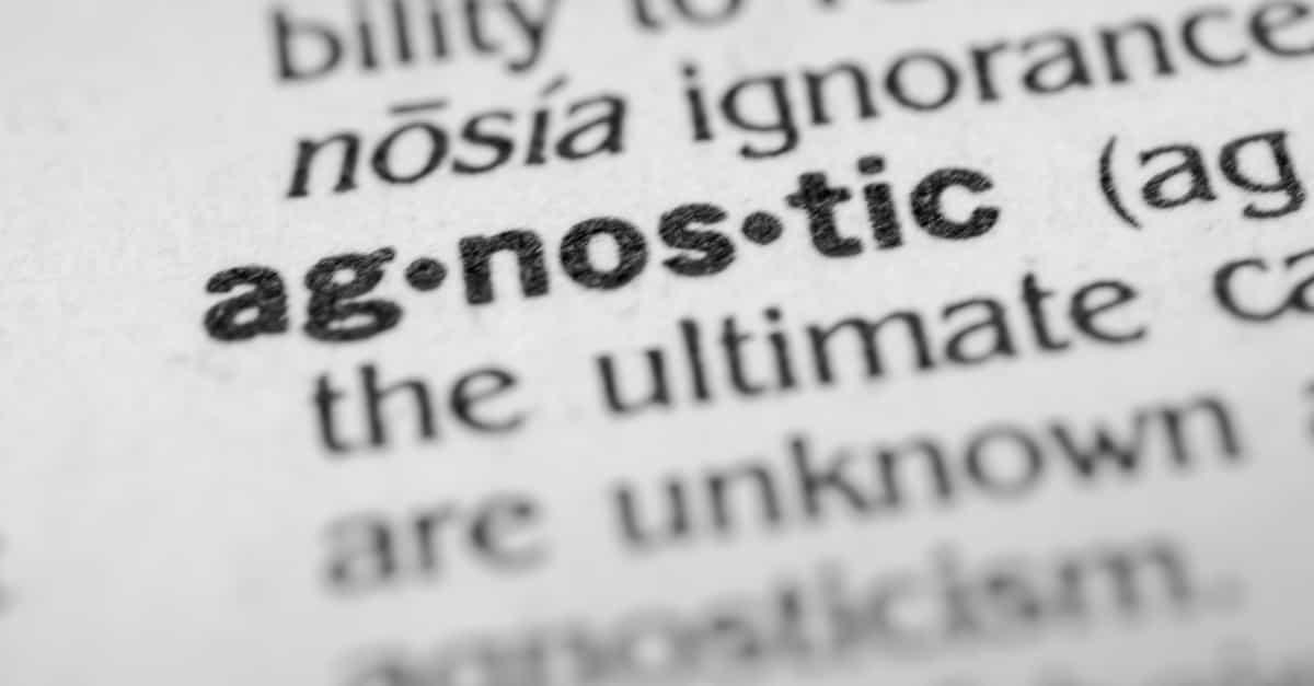 Dictionary definition of agnostic