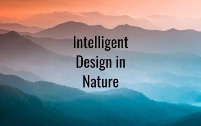 Intelligent Design in Nature – Where We Find It